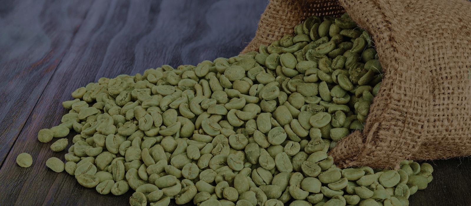 Cum functioneaza boabele de cafea verde?