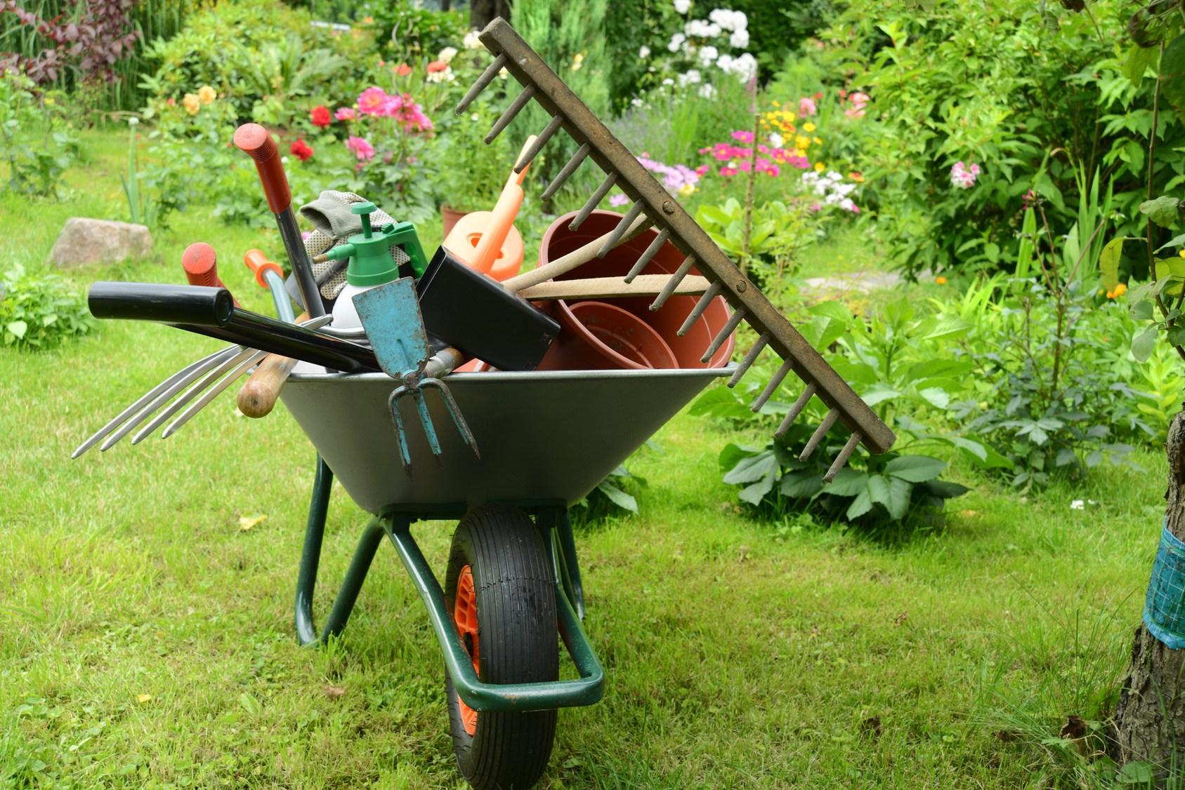 Care sunt uneltele de care ai nevoie toamna in gospodarie